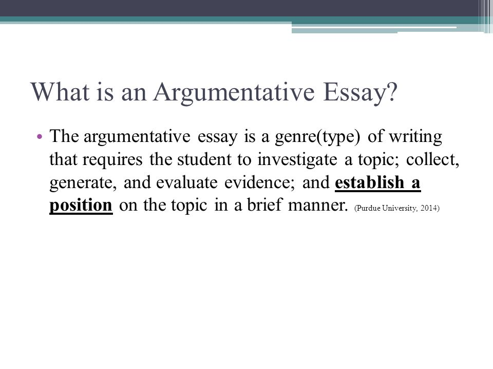 what is a argument essay