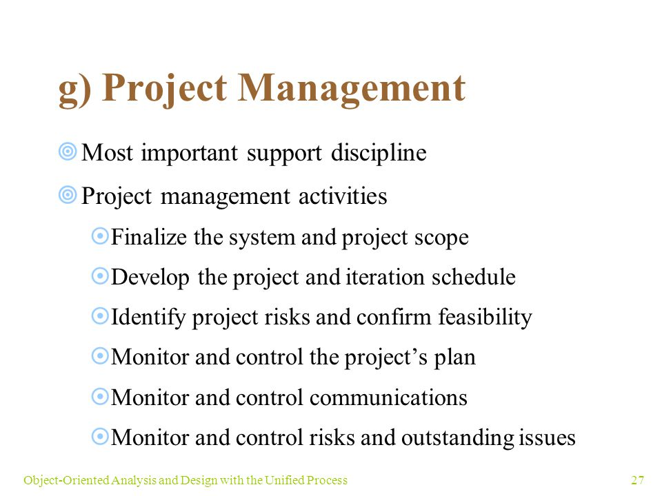 g) Project Management Most important support discipline
