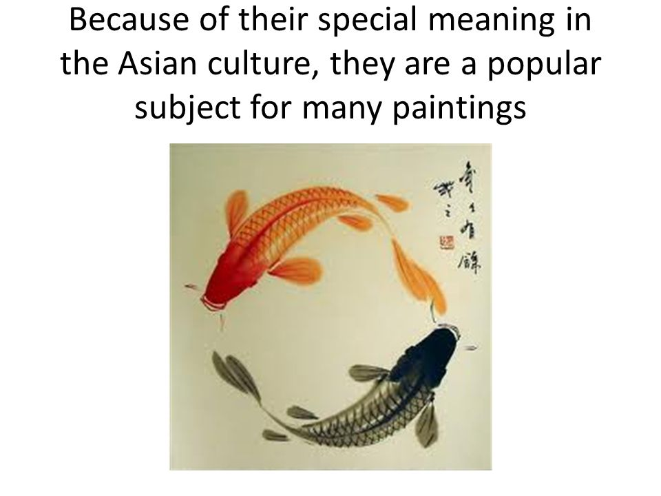 Koi fish color meaning for Koi color meaning