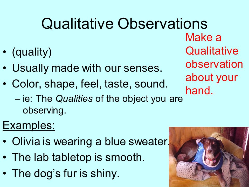 Observations Observations- Using our five senses to gather ...