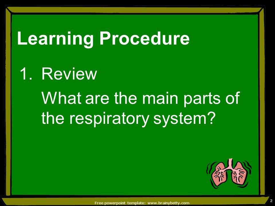 Parts of the respiratory system and its function ppt video free powerpoint template brainybetty toneelgroepblik Image collections