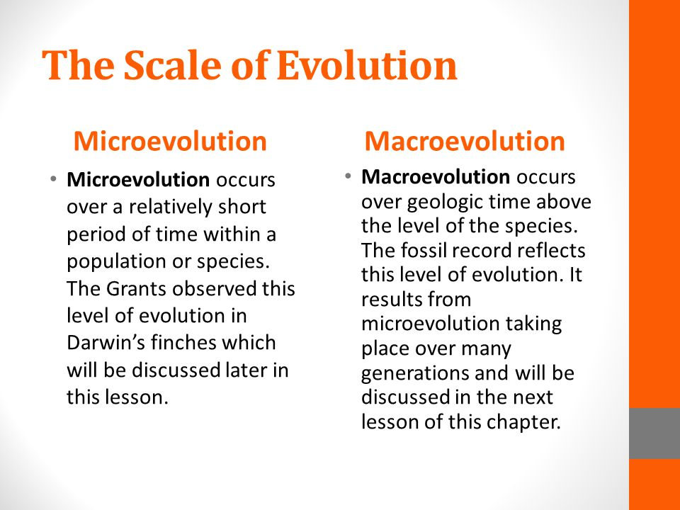 microevolution and macroevolution Microevolution happens on a small scale (within a single population), while macroevolution happens on a scale that transcends the boundaries of a single species despite their differences, evolution at both of these levels relies on the same, established mechanisms of evolutionary change.