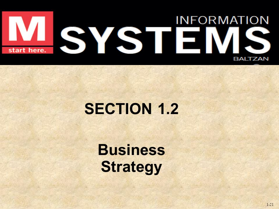 SECTION 1.2 Business Strategy