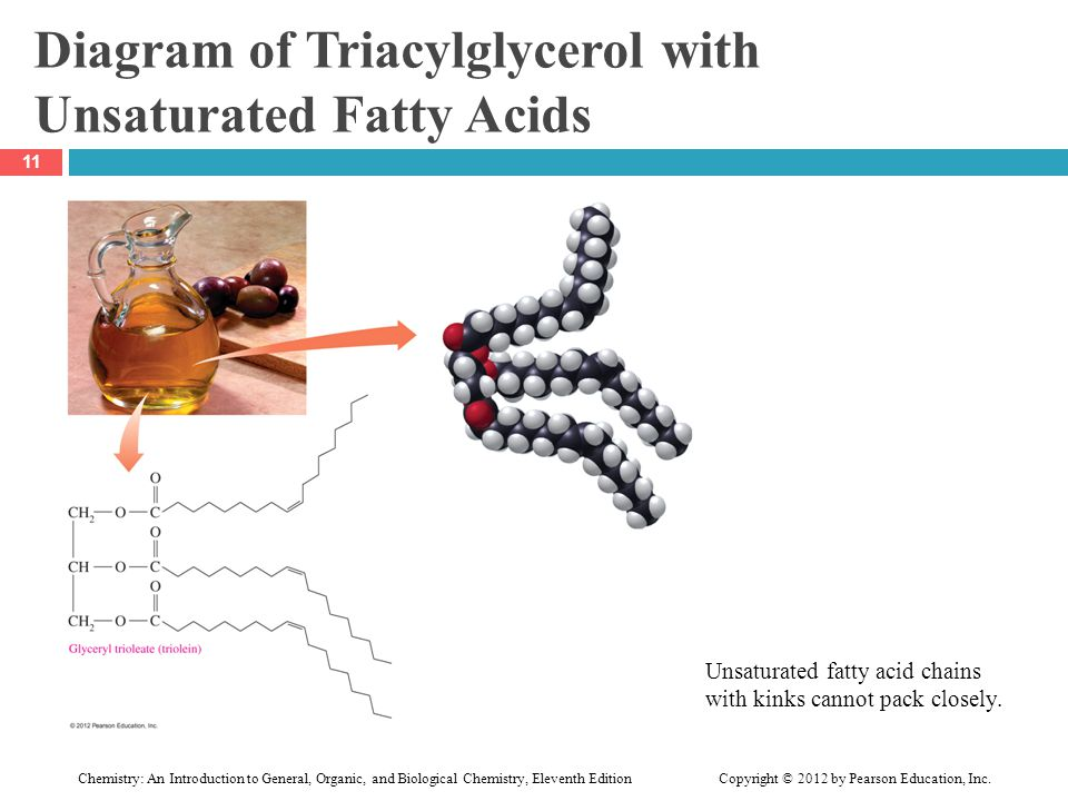 Diagram of Triacylglycerol with Unsaturated Fatty Acids