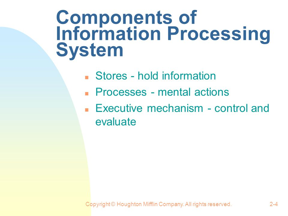 Components of Information Processing System