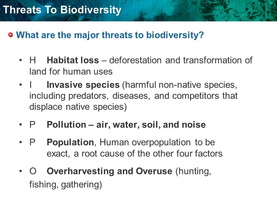 What are the major threats to biodiversity