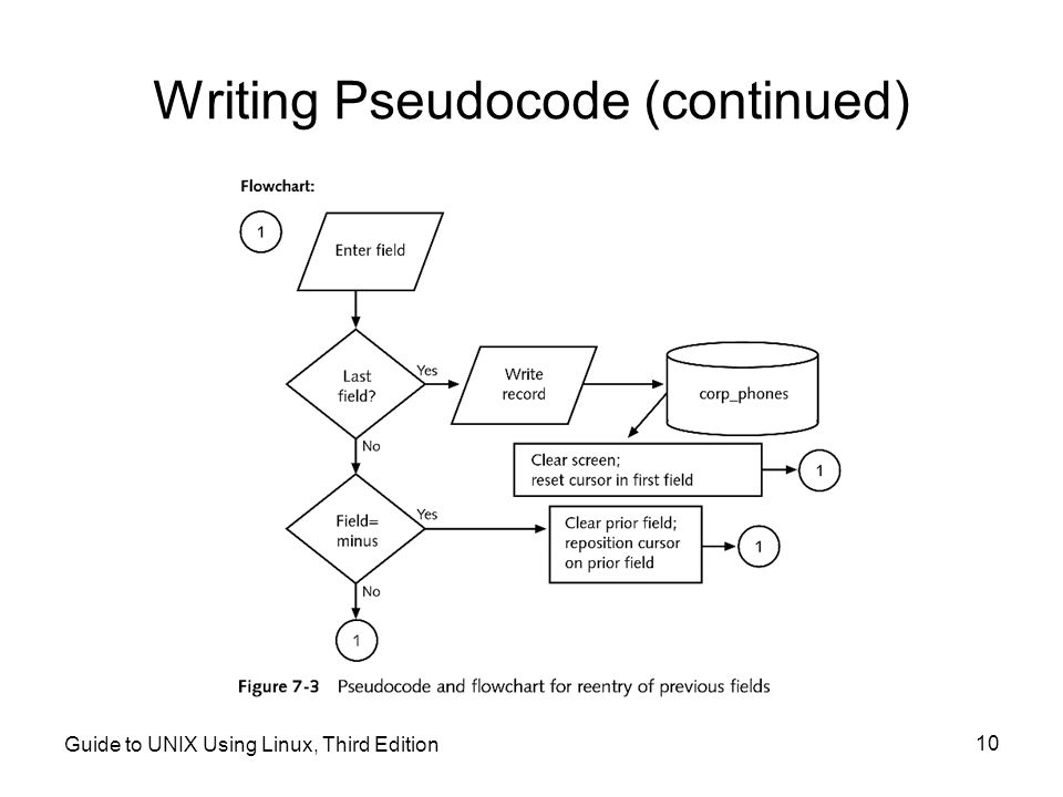 Writing Pseudocode (continued)