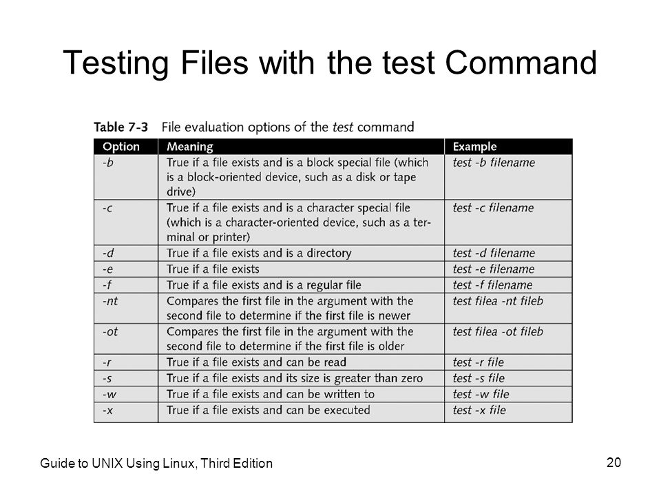Testing Files with the test Command