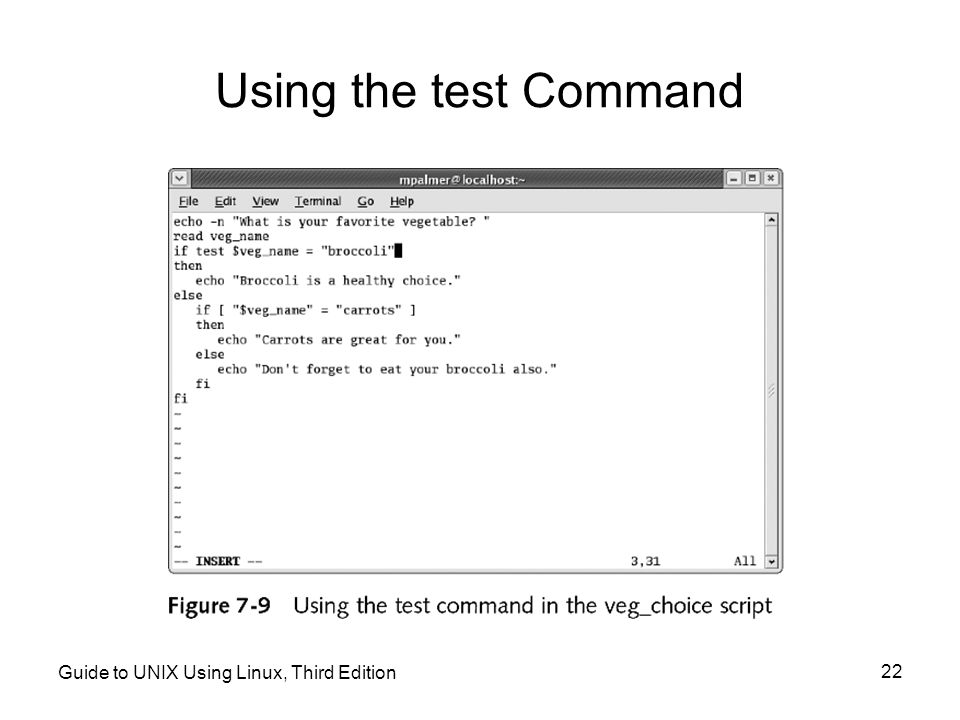 Using the test Command Guide to UNIX Using Linux, Third Edition
