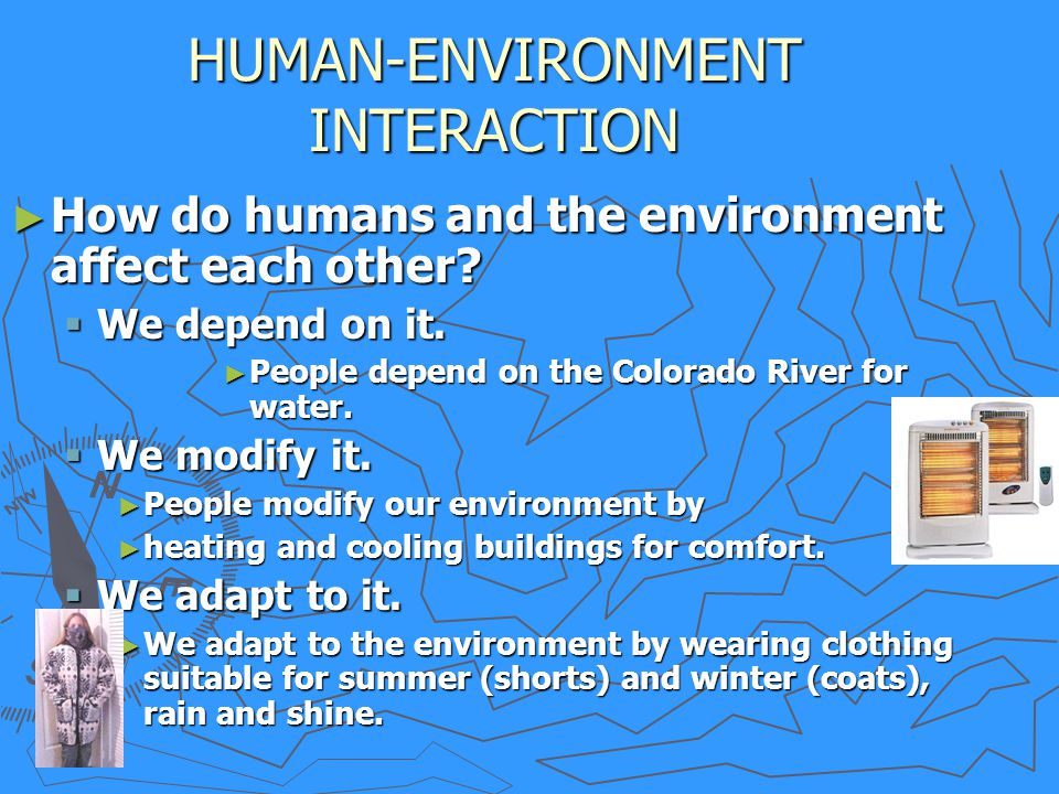 Interactions between Beings and the Environment