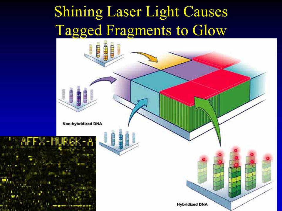 Shining Laser Light Causes Tagged Fragments to Glow