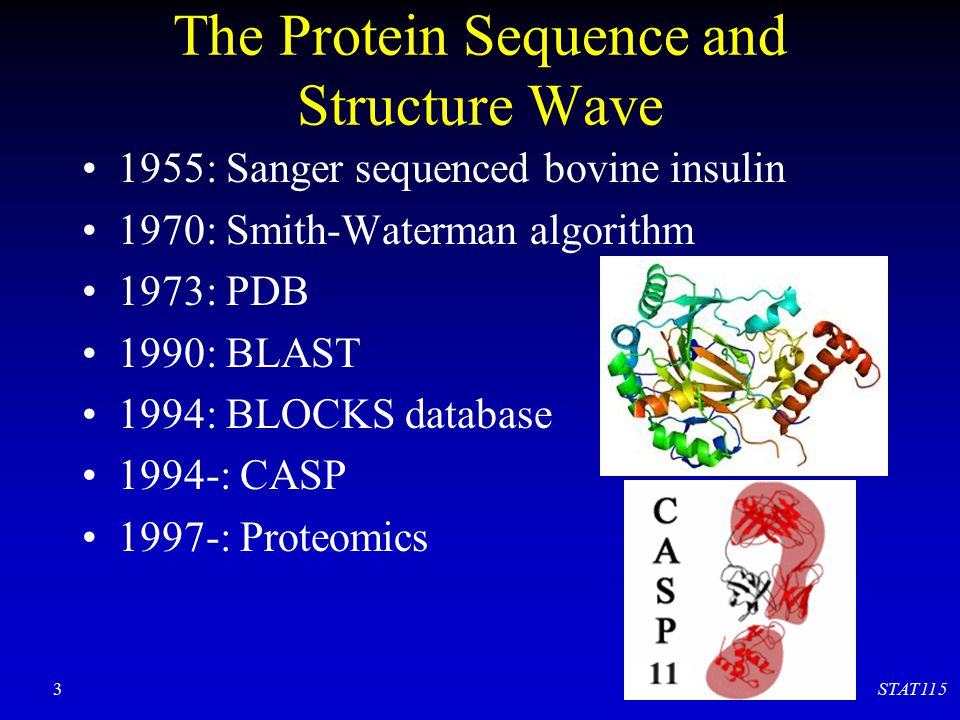 The Protein Sequence and Structure Wave