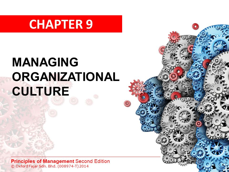 CHAPTER 9 MANAGING ORGANIZATIONAL CULTURE