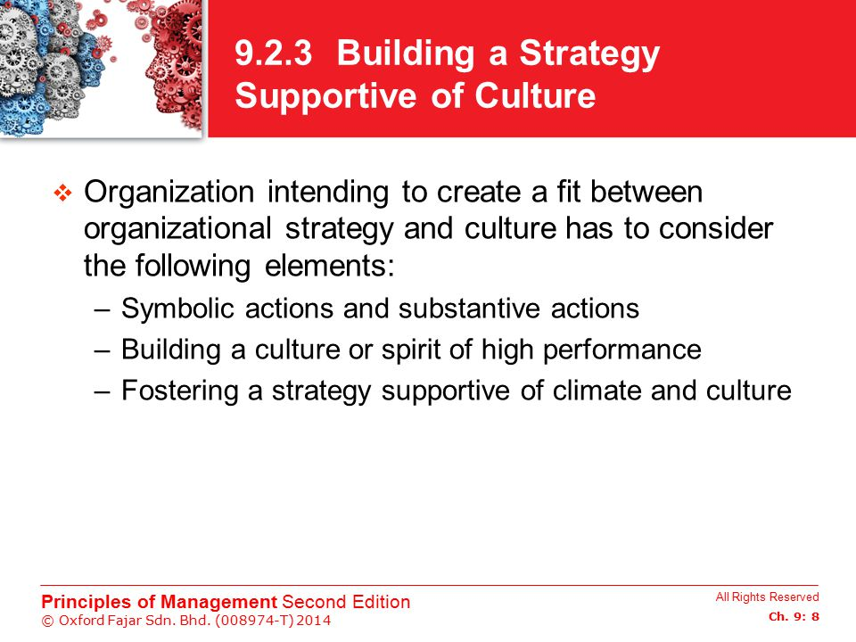 9.2.3 Building a Strategy Supportive of Culture