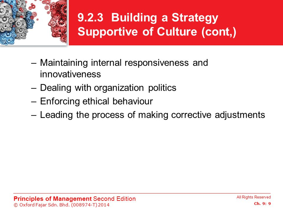 9.2.3 Building a Strategy Supportive of Culture (cont,)