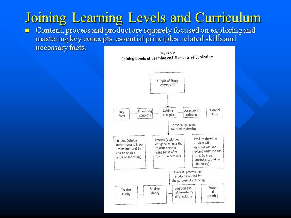 Joining Learning Levels and Curriculum