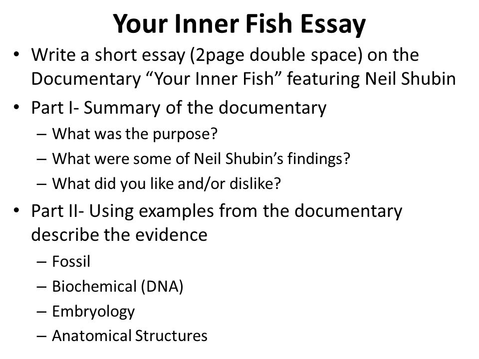your inner fish essay write a short essay 2page double
