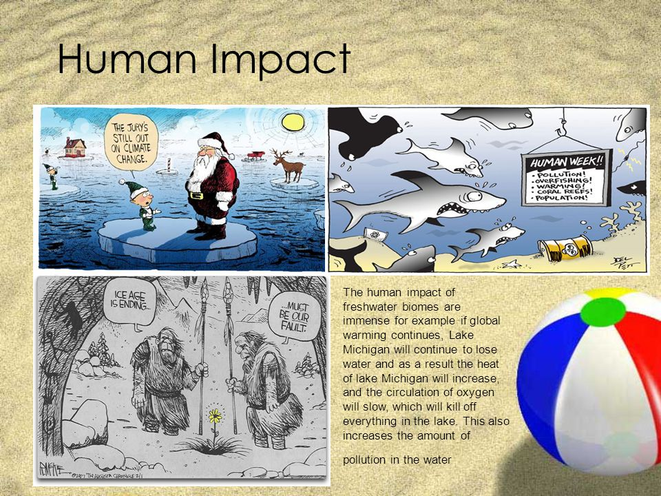 The human impact on the global