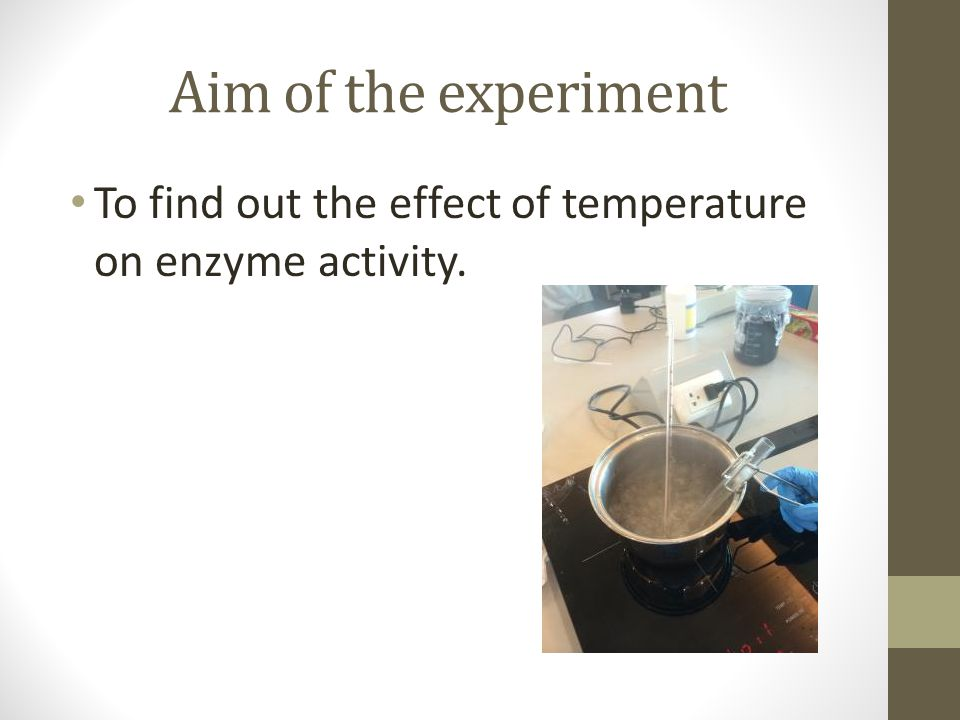 3 what was the effect of using less enzyme on your experiment Be sure to state your hypothesis, describe your design, dissect your variables (iv/dv), and predict your results when you describe your design, be sure to explain where you will find the enzymes for this experiment and what substrate you will use.