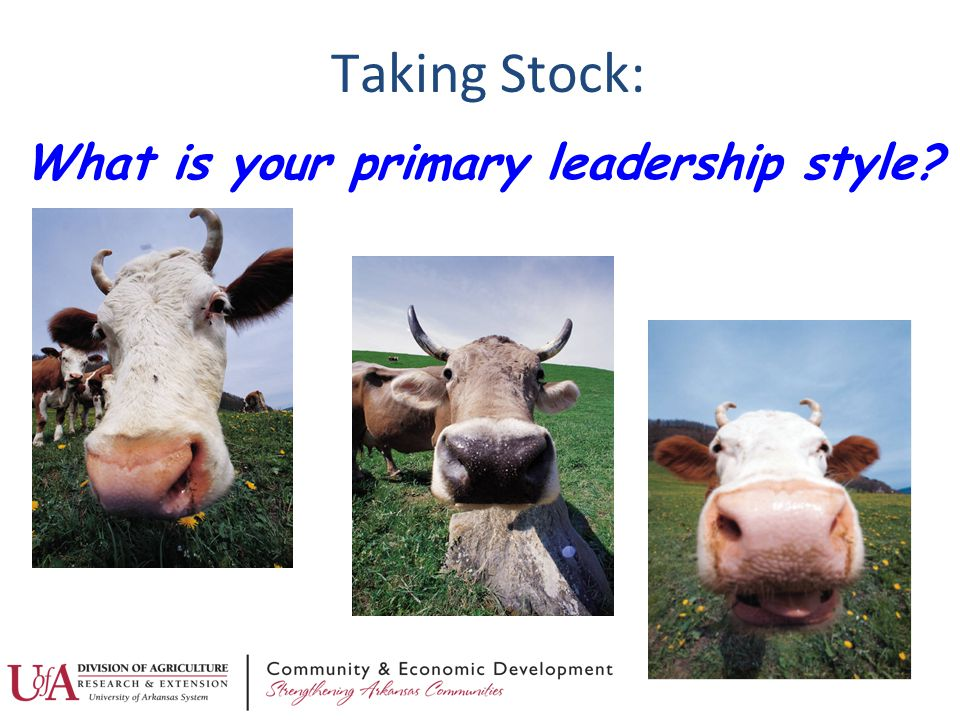 Taking Stock: What is your primary leadership style