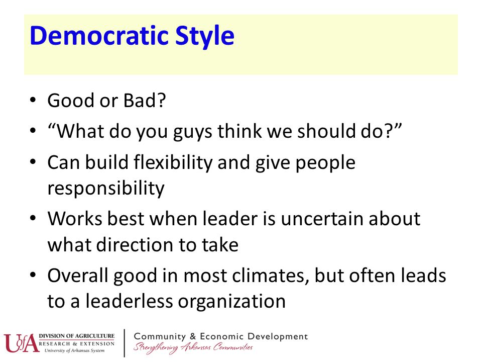 Democratic Style Good or Bad What do you guys think we should do