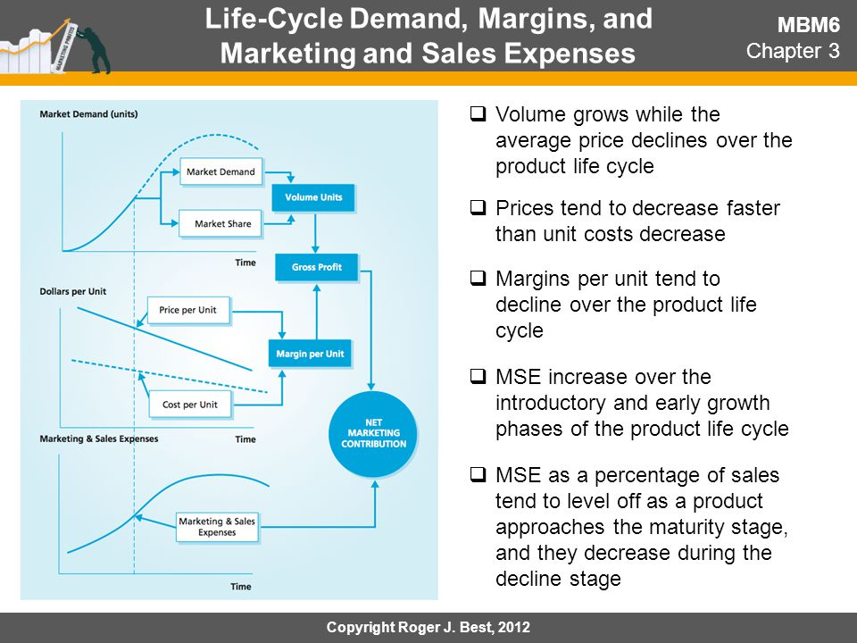 Life-Cycle Demand, Margins, and Marketing and Sales Expenses