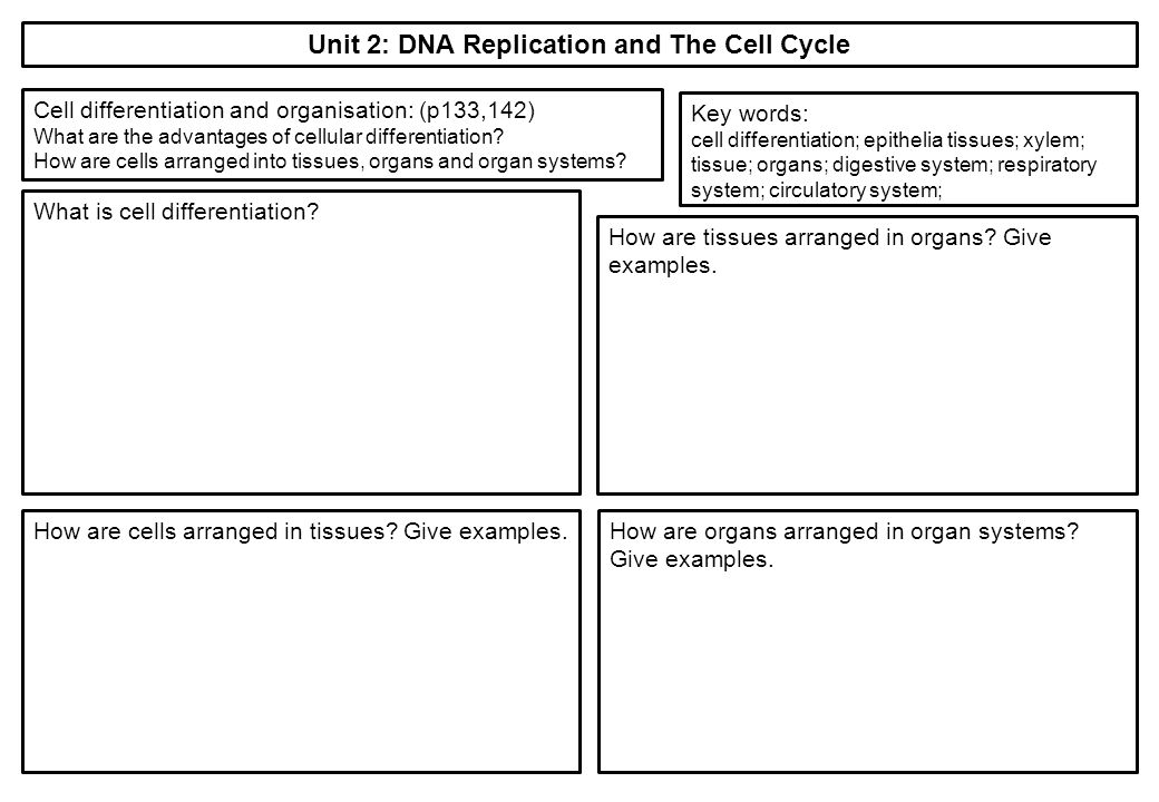 the advantages of dna replication Dna replication begins at places called origins, within the dna molecule and the creation of replication forks the process of strand separation is made possible because of the enzyme helicase, which separates the two strands using the energy derived from atp hydrolysis.