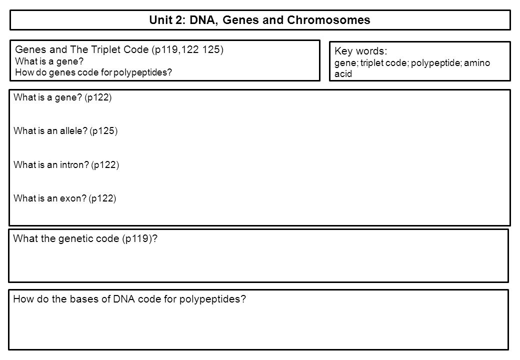 Unit 2 The variety of living organisms ppt download – Dna and Genes Worksheet Answers
