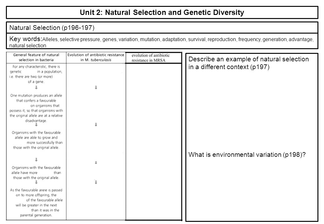 Why Is Genetic Variation And Mutation Important For Natural Selection