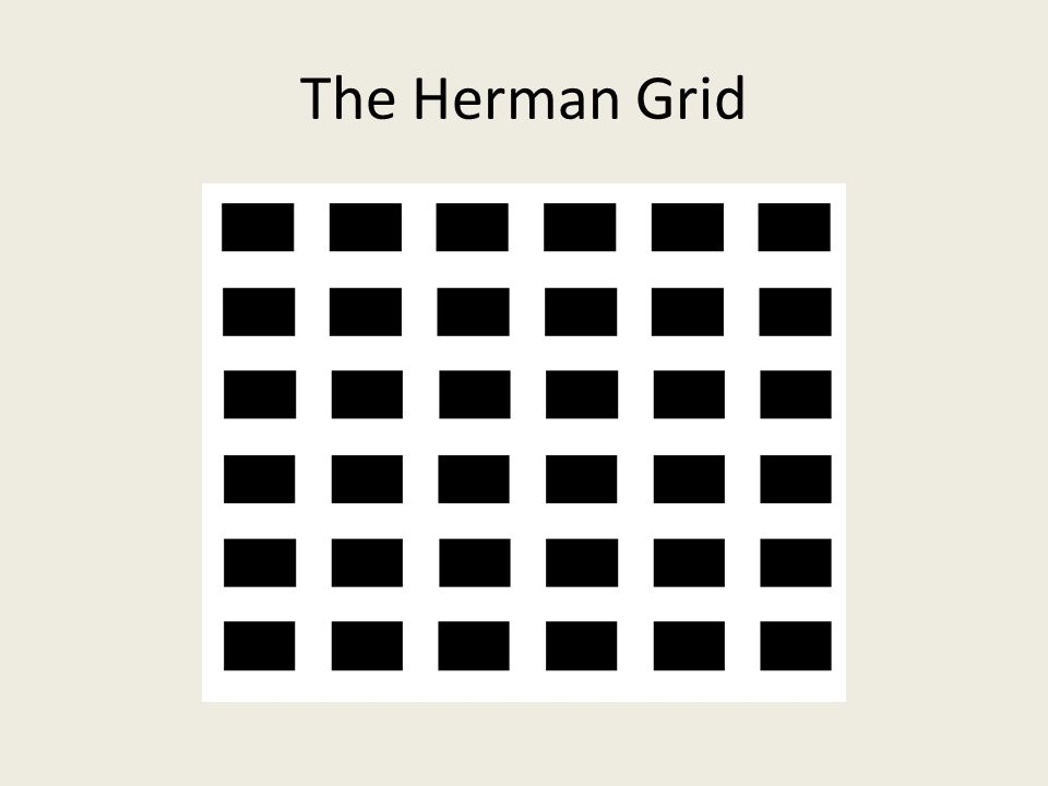 The Herman Grid