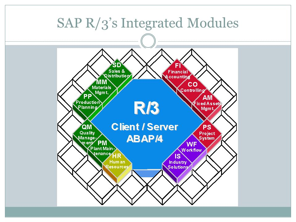 SAP R/3's Integrated Modules
