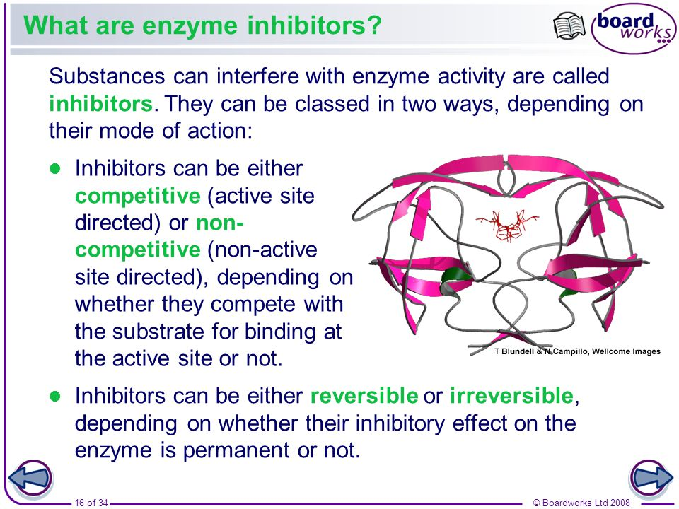 What are enzyme inhibitors