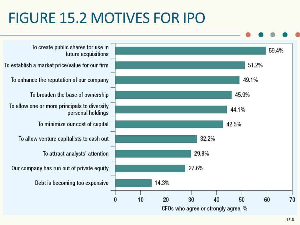 FIGURE 15.2 MOTIVES FOR IPO