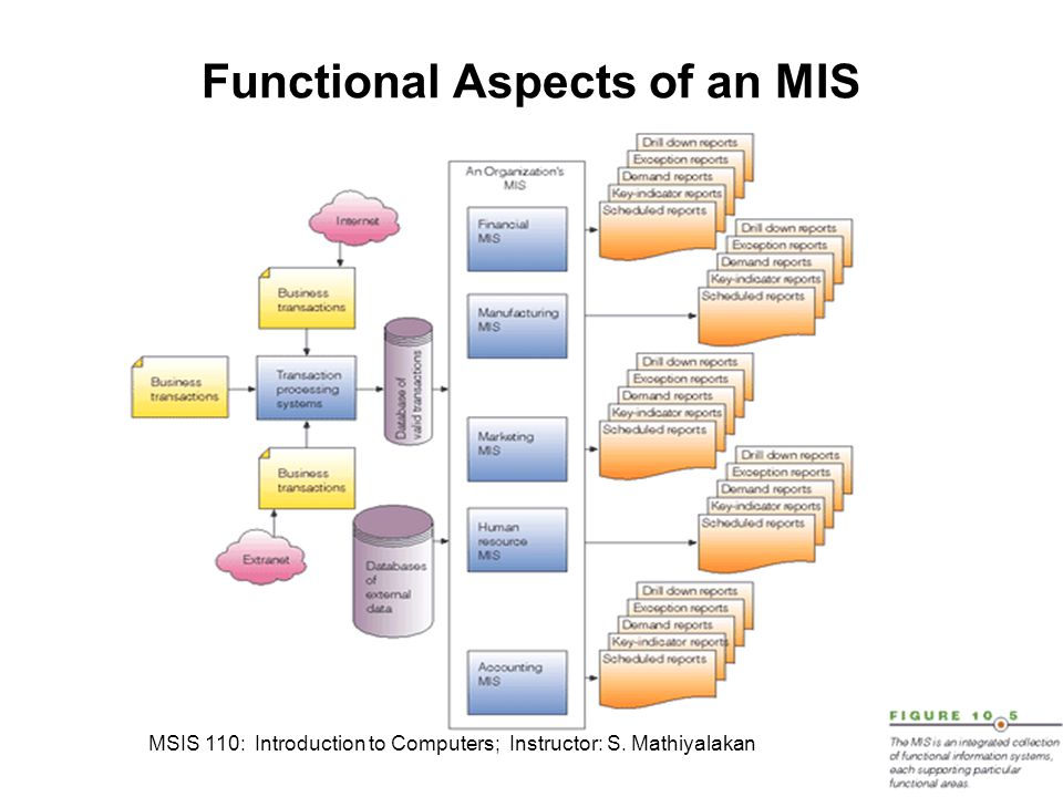 Functional Aspects of an MIS