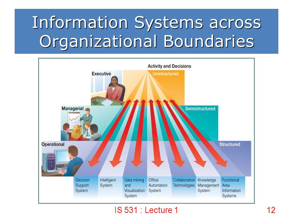 Information Systems across Organizational Boundaries