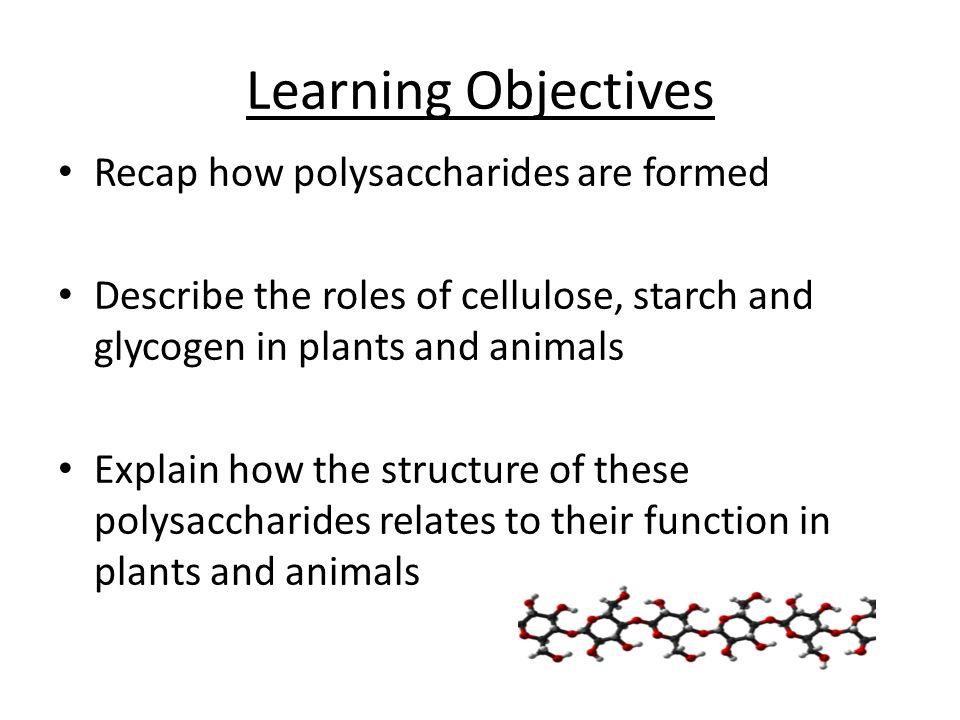 Learning Objectives Recap how polysaccharides are formed