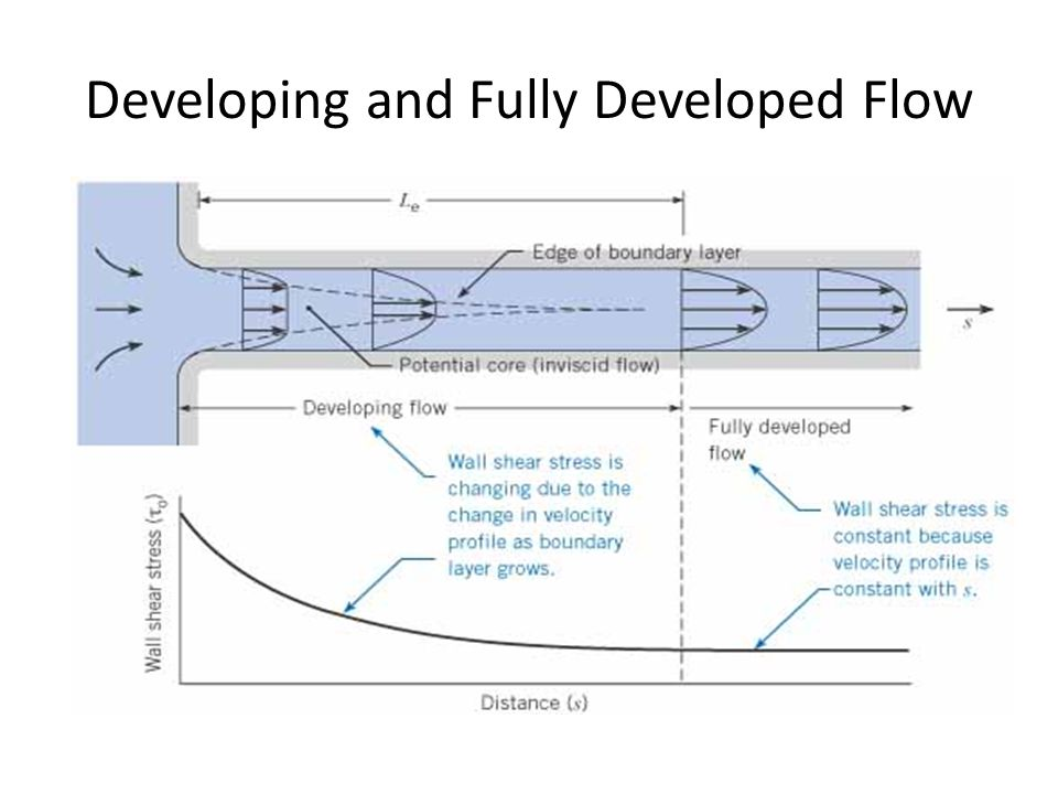 Developing and Fully Developed Flow