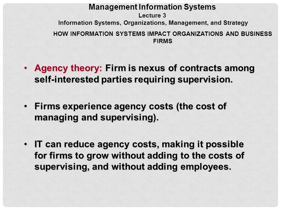 how information systems impact organizations and business firms pdf