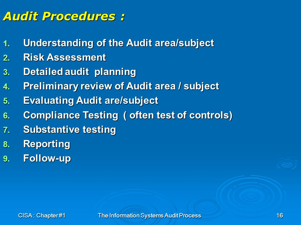 The Information Systems Audit Process