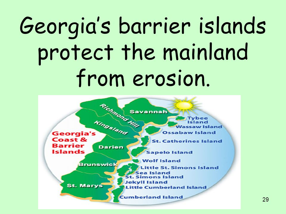 Georgia's barrier islands protect the mainland from erosion.