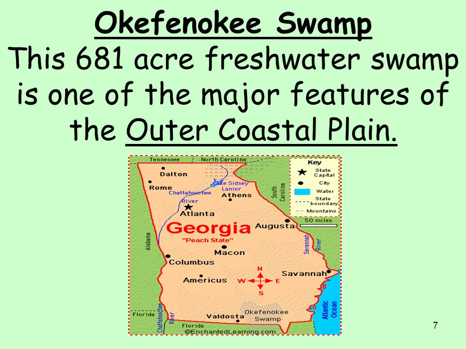 Okefenokee Swamp This 681 acre freshwater swamp is one of the major features of the Outer Coastal Plain.