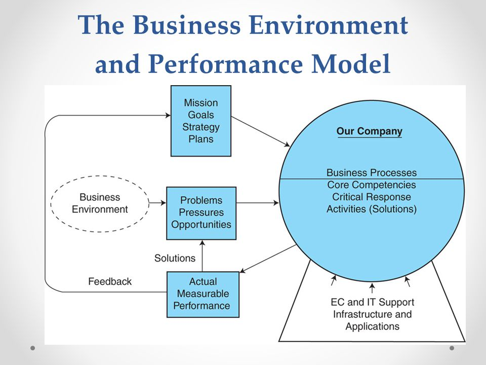 The Business Environment and Performance Model