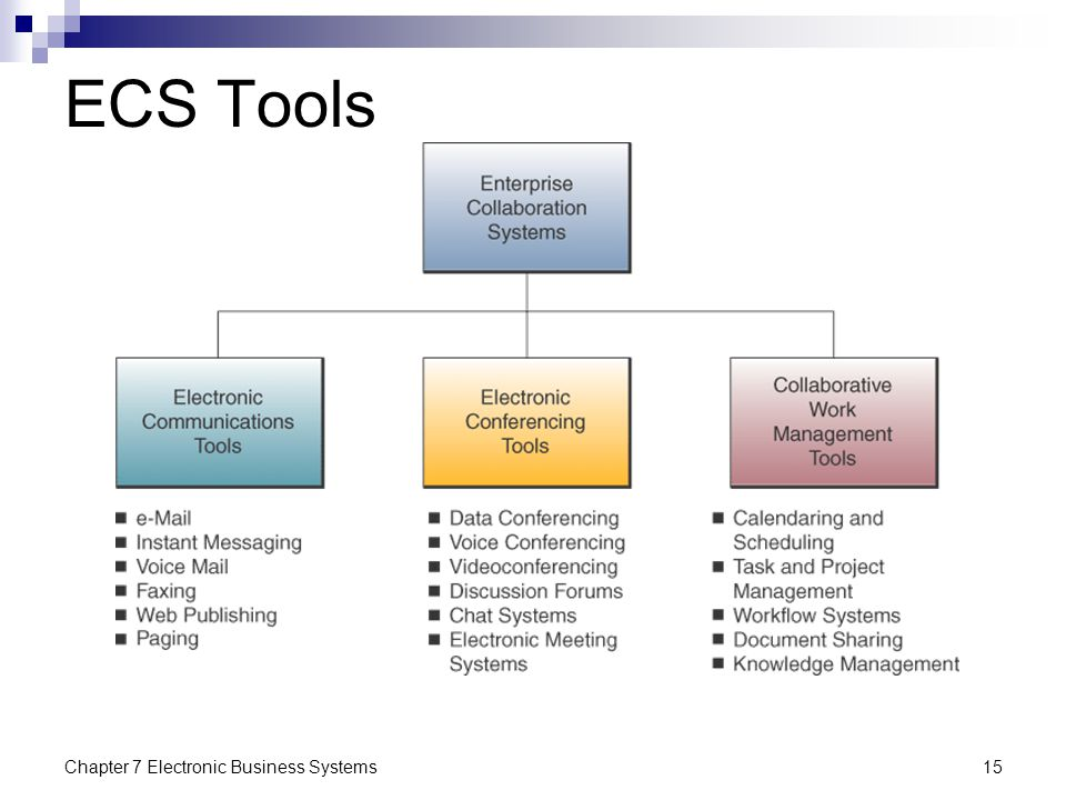 ECS Tools Chapter 7 Electronic Business Systems