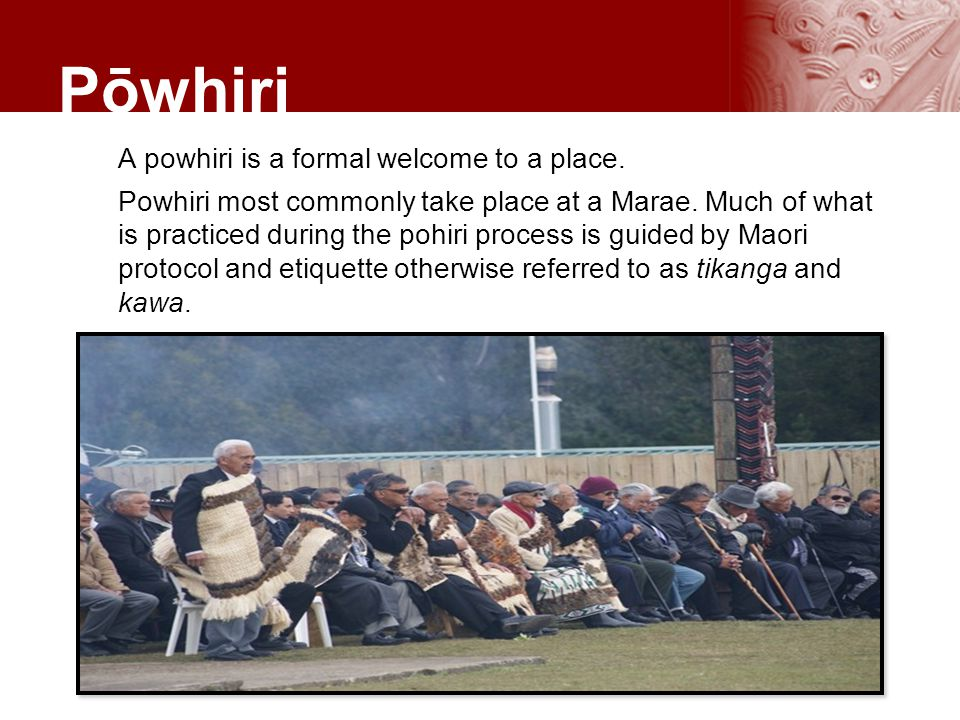 the powhiri process Marae and powhiri protocol and customs posted by:  a powhiri is the traditional way to welcome guests onto a  in a traditional greeting process called a hariru.