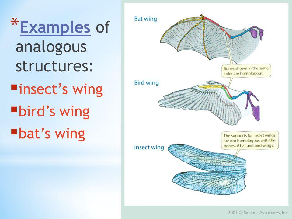 analogous examples. 7 examples analogous v