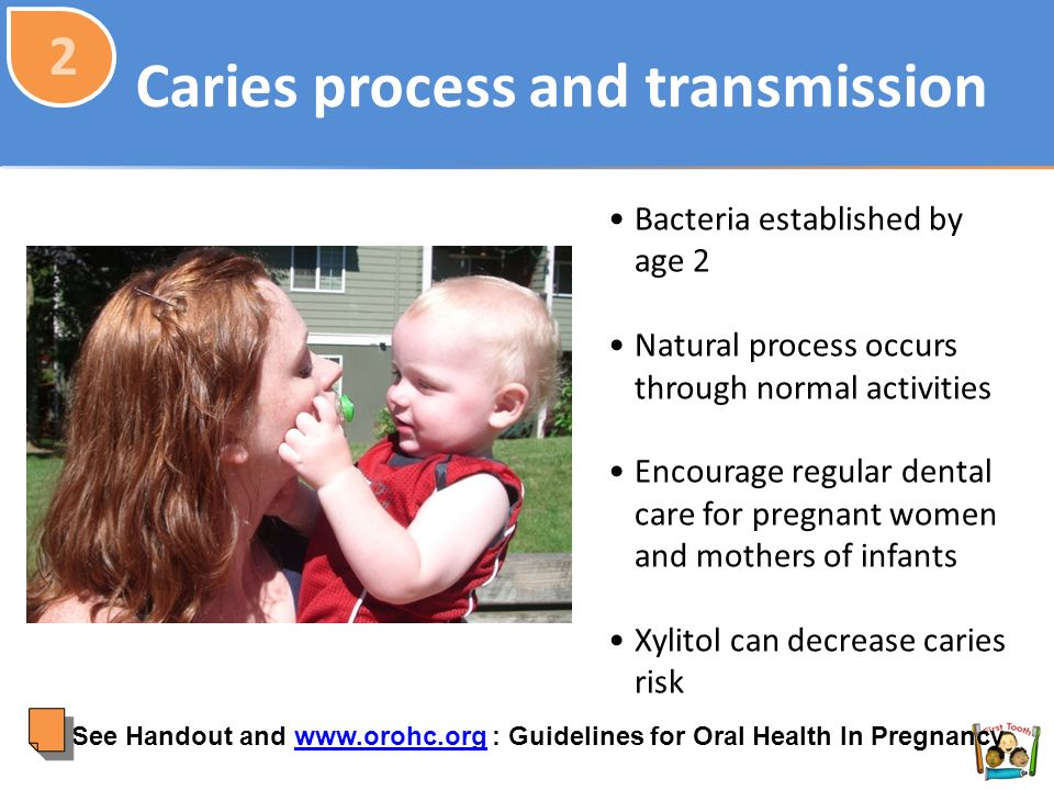 Caries process and transmission