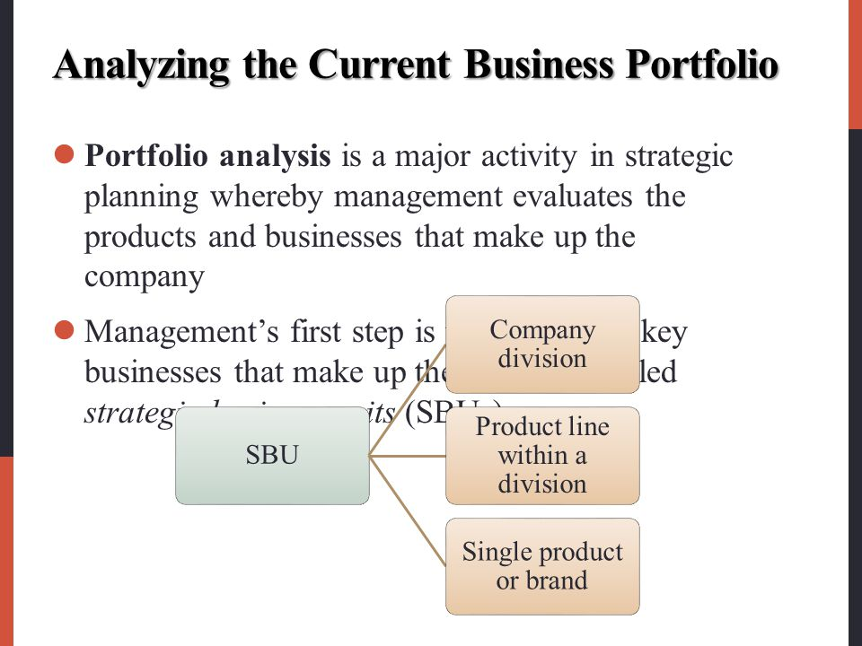 Analyzing the Current Business Portfolio