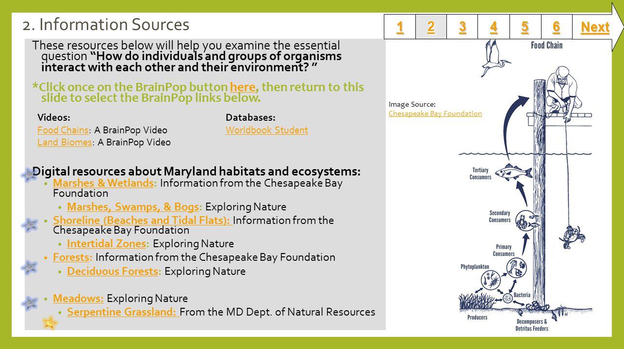 Md Dept Of Natural Resources