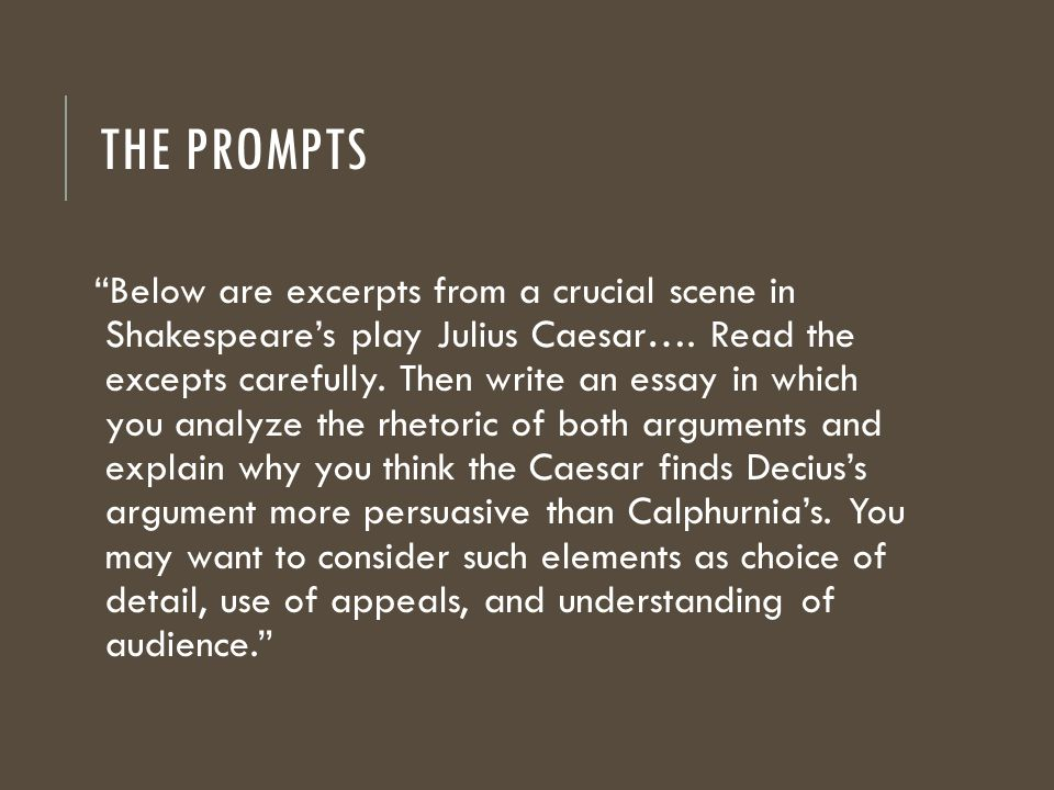 Fugitive pieces book analysis essay