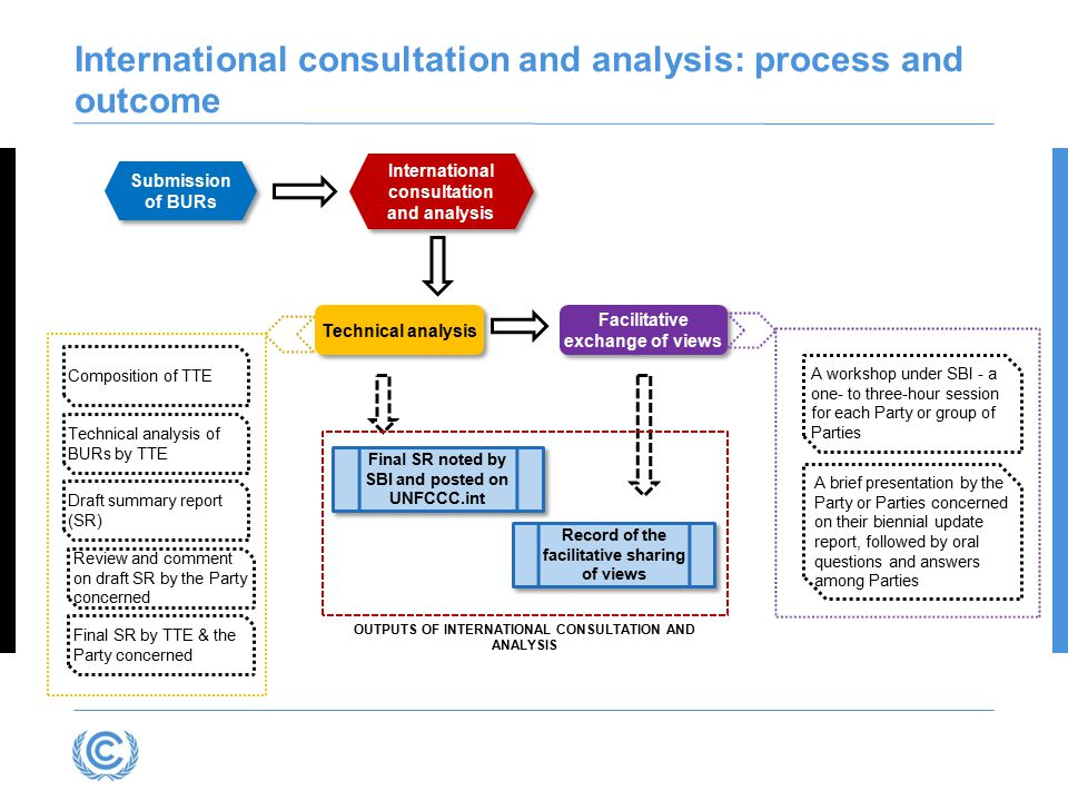 International consultation and analysis: process and outcome